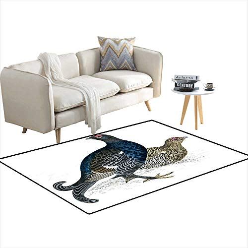 Kids Carpet Playmat Rug Black Grouse Hand Coloured Engraving ()