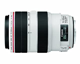 Canon EF 70-300mm f/4-5.6L IS USM UD Telephoto Zoom Lens for Canon EOS SLR Cameras (B0040X4PQI) | Amazon Products