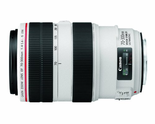 Canon EF 70-300mm f/4-5.6L IS USM UD Telephoto Zoom Lens