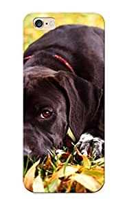 961ebb1955 Anti-scratch Case Cover Standinmyside Protective Beautiful Black Dog Case For Iphone 6 Plus