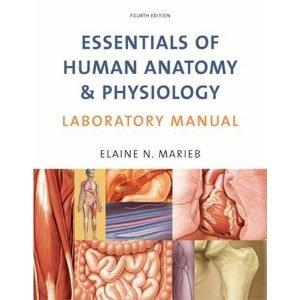 silverthorn human physiology 4th edition pdf