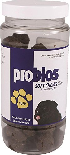 Probios Soft Chews for Medium and Large Dogs, 240gm
