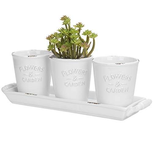(MyGift Farmhouse Style White Ceramic Mini Succulent Pots with Handled Display Tray, 4-Piece Set)