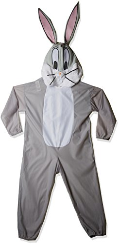 Adult Bugs Bn Costume
