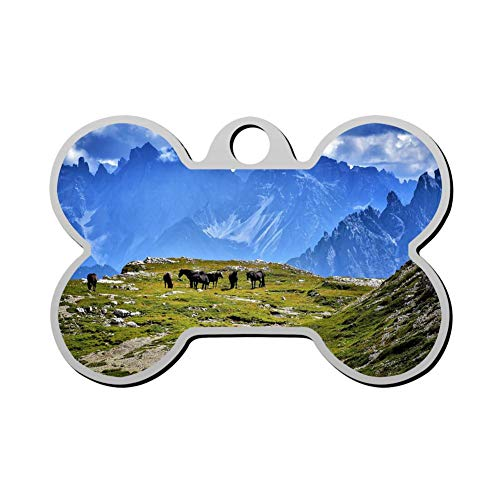 (Kafne Prairie Under The Blue Sky Personalized pet ID tag cat tag and Dog tag - Bone Shaped Identification tag)