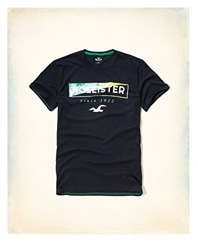 hollister-hco-logo-mens-graphic-t-shirt-tee-s-navy-28-tee