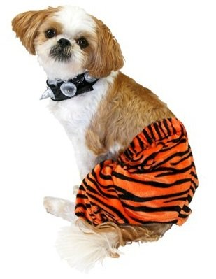 Pet Costume - Punk Rocker - Orange Zebra (X-SMALL) ()