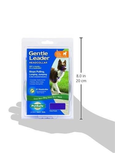 PetSafe Gentle Leader Head Collar with Training DVD, MEDIUM 25-60 LBS., DEEP PURPLE by PetSafe (Image #6)