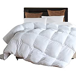 Microfiber Comforter (White,Queen) - Premium Brushed Microfiber Cover- Hypoallergenic Plush Down Alternative Comforter Duvet Insert by LLOVSOUL (90x90 inches)