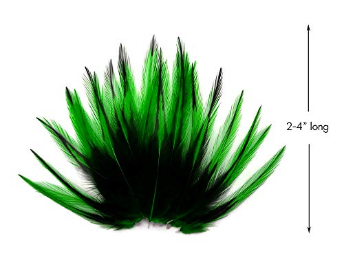Rooster Feathers 10 Pieces Kelly Green Laced Medium Rooster Cape Feathers -