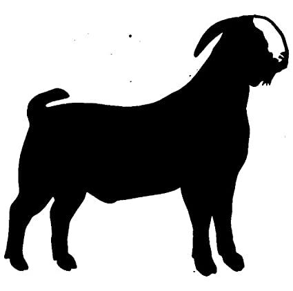 Amazon.com  Boer Goat - Farmer Rubber Stamps custom stamps rubber ... 16a1657bd