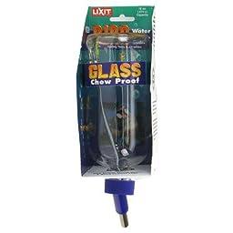 Lixit Glass Water Bottle (16 oz)