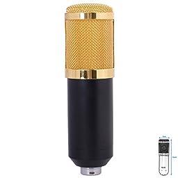 Audio Sound Condenser Microphone Kit + Wind Screen Pop Filter + Stand (Black) TH136