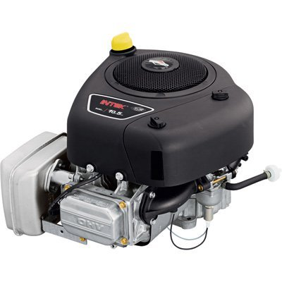 Amazon.com: Briggs & Stratton Intek Motor de OHV Vertical ...