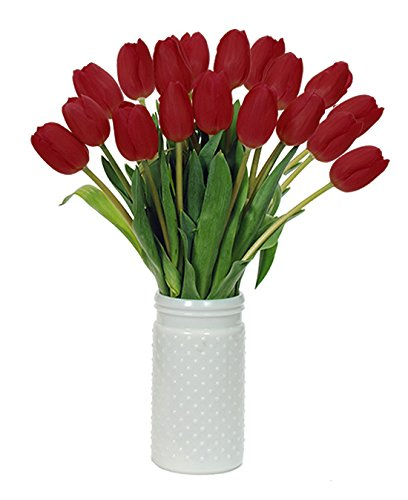 Stargazer Barn - Beautiful Red Tulips with Unique Hobnail Style Glass Vase - Red Tulips - Sustainably Grown in California - Red Flowers - Birthday Gift - Anniversary Gift - Home Décor (Anniversary Gifts To Send)