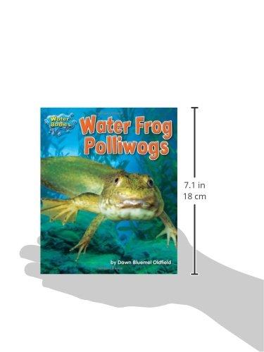 Water Frog Polliwogs (Water Babies)