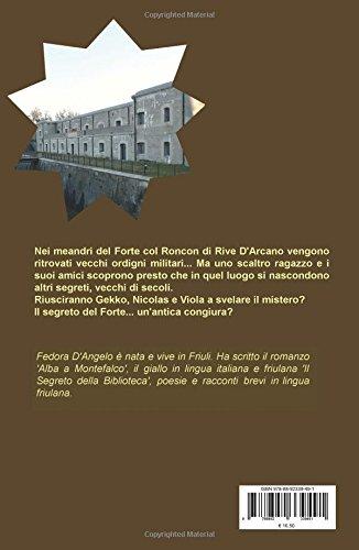 Il Cifrario  Amazon.co.uk  Fedora D Angelo  9788892339491  Books 8930932c35cc