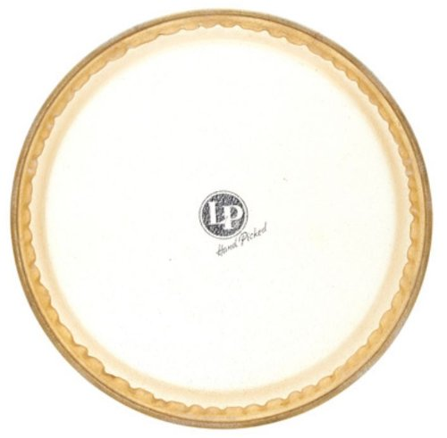 Rawhide Conga Head (Latin Percussion LP274A 11-Inch Galaxy Quinto Rawhide Head)
