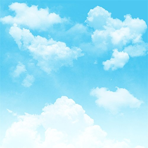 (CSFOTO 5x5ft Polyester Backdrop Blue Sky White Clouds Photography Background Children Birthday Party Cake Table Banner Spring Party Baby Infant Kid Newborn Toddler Girl Boy Digital Portrait Wallpaper)