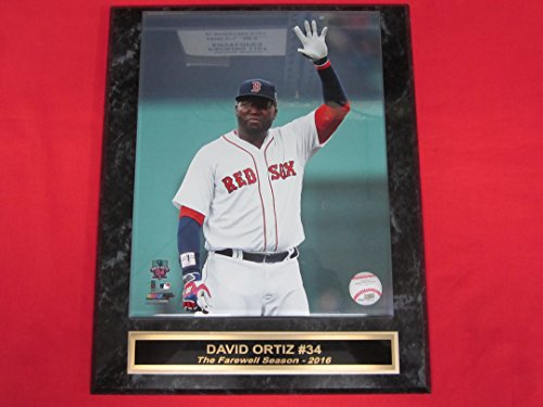Red Sox David Ortiz Collector Plaque w/8x10 FINAL SEASON Photo!