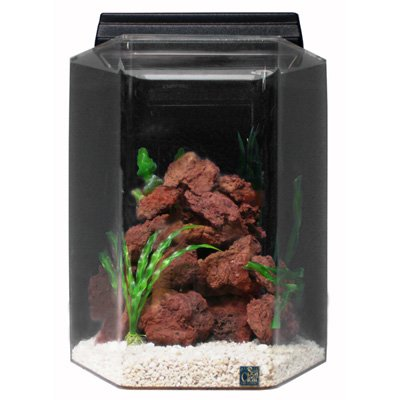 SeaClear 20 gal Deluxe Hexagon Acrylic Aquarium Combo Set, 15 by 15 by 24'', Cobalt Blue by SeaClear