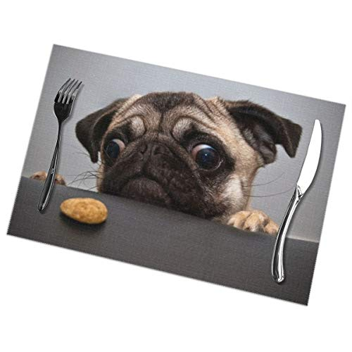 Affany Placemats for Dining Table, Heat Insulation Stain Resistant Table Mat Set of 6 Non Slip Washable Tray Mat Durable Place Mats for Kitchen Dining Room Table Decoration - Pug and Biscuits]()