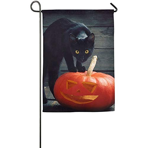 HGDGF Variety Eco-Friendly Manual Custom Home Flag Demonstration Flag Game Flag Black Cat Halloween Pumpkin Garden Flag Indoor & Outdoor Decorative -