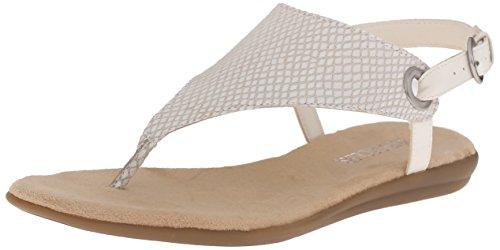Aerosoles Womens Conchlusion Gladiator Sandal