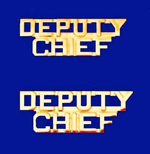 Deputy Chief Collar Pin Set Gold Cut Out Letters Fire Dept Police Rank P2214 Lapel Pin (Police Dept Patch)
