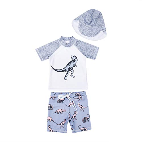 Heima Catrin Baby Toddler Boys' 3-Piece Swimsuit Set Dinosaur Bathing Suit Trunk and Rashguard with Hat Grey, 04(2-3T)