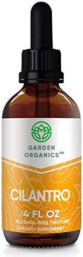 Garden Organics – Cilantro Alcohol-Free Extract, Organic Cilantro Coriandrum Sativum Dried Leaf 4 Fl Oz