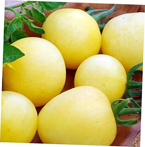 YOZ 10g (Min. 30 Seeds) Garden Peach Tomato - RK98 (Sweet Fruit That Resembles A Large Tomato)