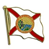 US Flag Store Lapel Pin Florida Flag