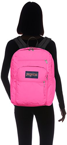 Ultra Viking Backpack Big JanSport Red Student Pink pw8znqTU