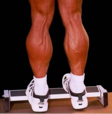 Extreme Calf Machine - Black, Leg Machines - Amazon Canada