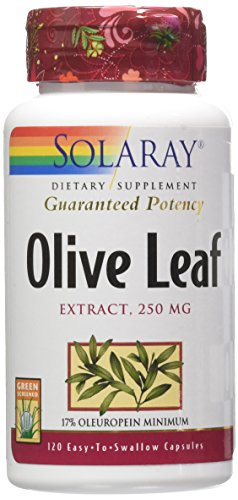 olive leaf extract solaray - 2