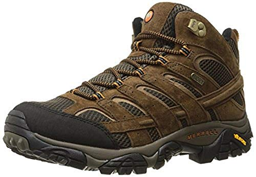 Merrell Men's Moab 2 Mid Waterproof Hiking Boot, Earth, 9.5 M US