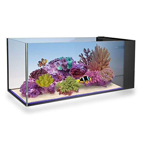 innovative-marine-fusion-peninsula-20-gallon-glass-nuvo-aquarium