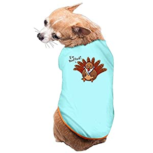 Cute Little Turkey Thanksgiving Day Dog Costume Style