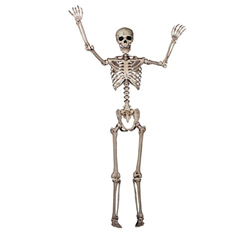 5' Po (Skeleton Costume Pose)
