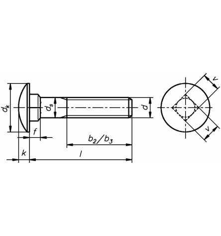 Reidl Flachrundschrauben mit Vierkantansatz 12 x 180 mm DIN 603 A2 blank 1 St/ück