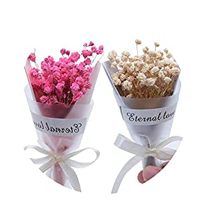 Sevem-D 1Pcs/Lot Mini Gypsophila Natural Dried Flowers for Wedding Home Decoration DIY Craft Sky Stars Flowers 101