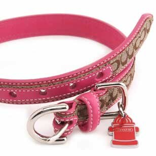 "COACH Mini Signature Collar with Engraveable Charm 60178 Limited Edition - Pink, X-Large (22""-26"")"