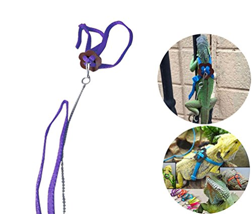 1.2M Adjustable Reptile Lizard Harness Leash for Outdoor Walk (Purple) - 1