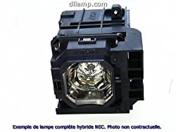Vt575 Nec Projector Lamp Replacement Projector Lamp Assembly With High Quality Genuine Original Ushio Bulb Inside
