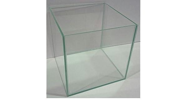Cristal Acuario Cubo (35 x 35 x 35 cm cristal Platillos Acuario Cube sin puntales transparente verklebt: Amazon.es: Productos para mascotas