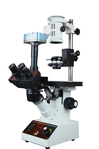 buy Radical Trinocular Inverted Phase Contrast Tissue Culture Microscope w 5 Mp USB Camera         ,low price Radical Trinocular Inverted Phase Contrast Tissue Culture Microscope w 5 Mp USB Camera         , discount Radical Trinocular Inverted Phase Contrast Tissue Culture Microscope w 5 Mp USB Camera         ,  Radical Trinocular Inverted Phase Contrast Tissue Culture Microscope w 5 Mp USB Camera         for sale, Radical Trinocular Inverted Phase Contrast Tissue Culture Microscope w 5 Mp USB Camera         sale,  Radical Trinocular Inverted Phase Contrast Tissue Culture Microscope w 5 Mp USB Camera         review, buy Radical Trinocular Inverted Contrast Microscope ,low price Radical Trinocular Inverted Contrast Microscope , discount Radical Trinocular Inverted Contrast Microscope ,  Radical Trinocular Inverted Contrast Microscope for sale, Radical Trinocular Inverted Contrast Microscope sale,  Radical Trinocular Inverted Contrast Microscope review