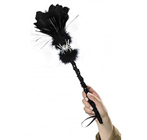 Amscan Witch Broom Wand, Standard, Multicolor]()