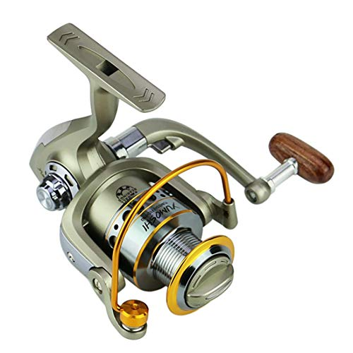 FELICIF Spinning Fishing Reel 12+1 Bearings Left Right Interchangeable Handle for Saltwater Freshwater Fishing with Double Drag Brake System (Size : 5000)