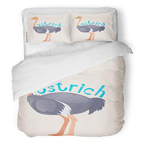 Semtomn Decor Duvet Cover Set Twin Size Animal Wordcard for Wild Ostrich Bird Carnivorous Clip Clipart 3 Piece Brushed Microfiber Fabric Print Bedding Set Cover
